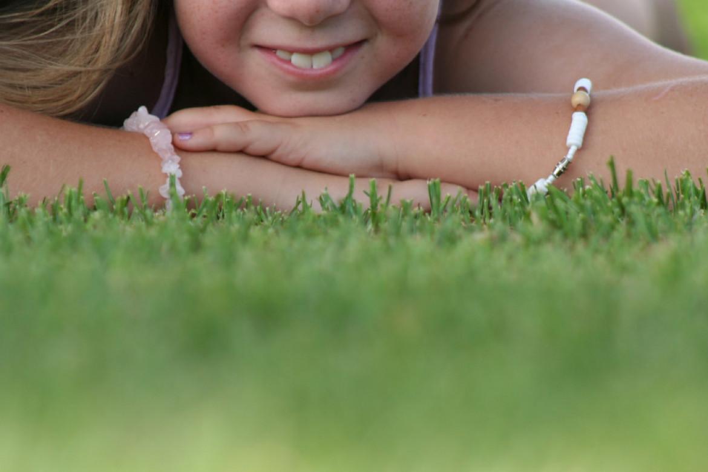 Come avere un tappeto erboso sano in estate